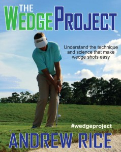 The  Wedge Project Giveaway Andrew Rice